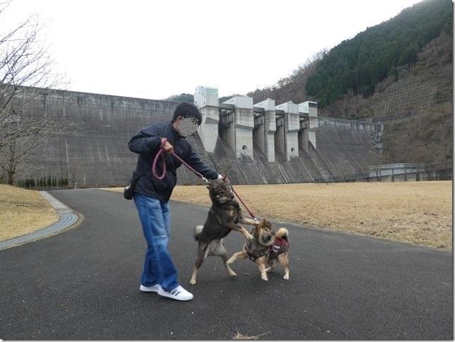 20191215ダム散歩京都05-09