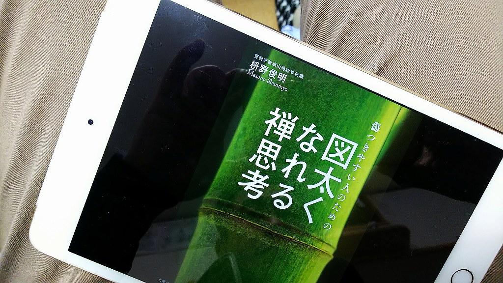 DSC_2243-s.jpg