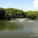 新緑の明石公園
