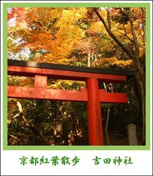 アルバム吉田神社
