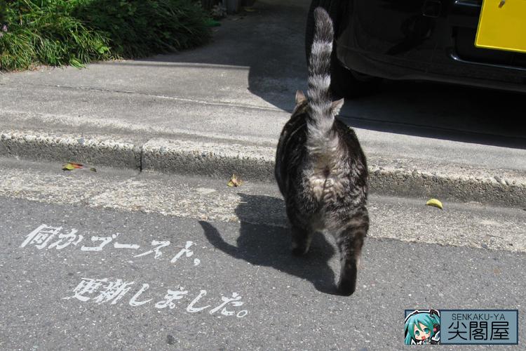 ネコの後ろ姿で更新。
