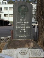 麻布善福寺 横浜山手歴史記事
