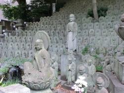 大円寺石像群 林家茶園