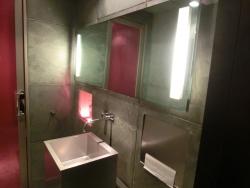 トイレの内部 アンリ・シャルパンティエ記事
