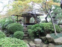 清光院 茶室のある庭 ゼームス坂散策2