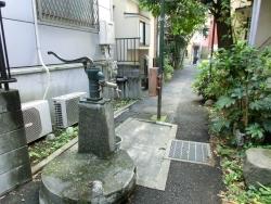 井戸 ハチロー記事2
