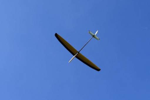 s19120410.jpg