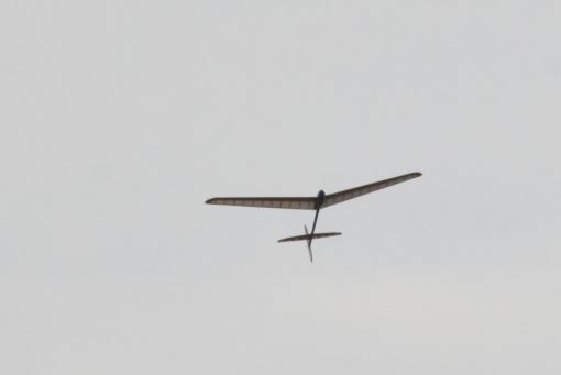 s19122555.jpg
