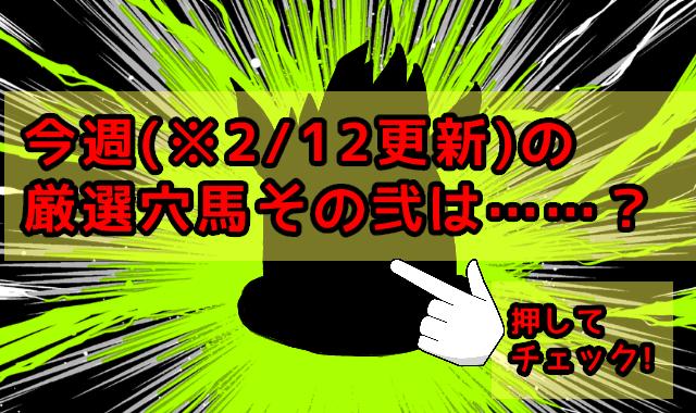 ※2/12更新今週の厳選穴馬(その弐)