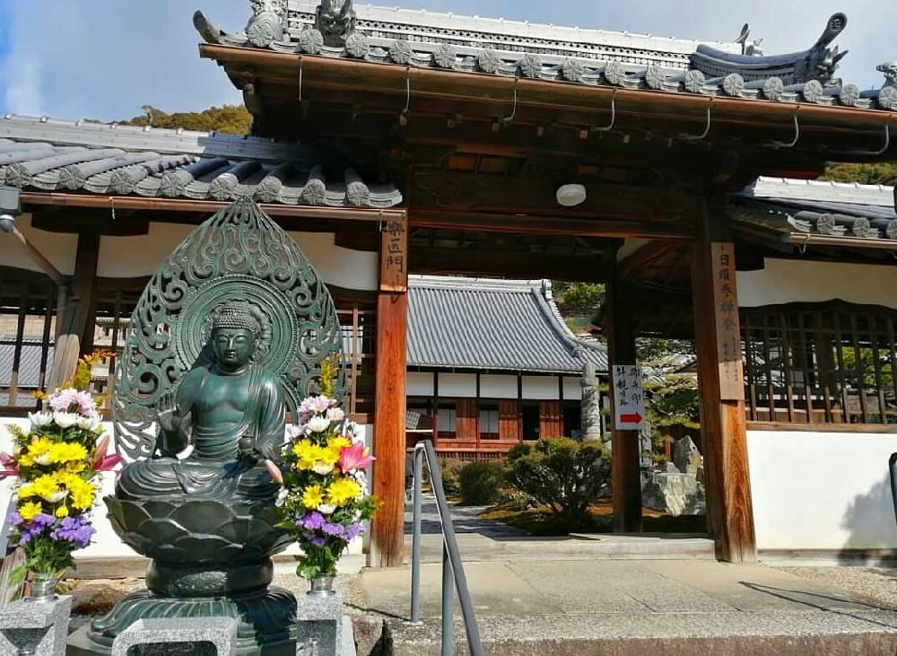 興聖寺の薬医門