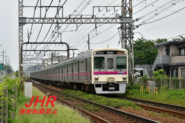 mini_DSC_9597.jpg