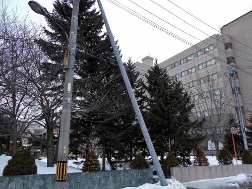 札幌厚生病院東側 市道東9丁目南線 電柱