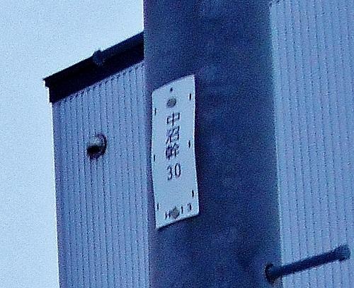 中央バス「丘珠線」 停留所「中野中央」近くの電柱「中沼幹」 拡大
