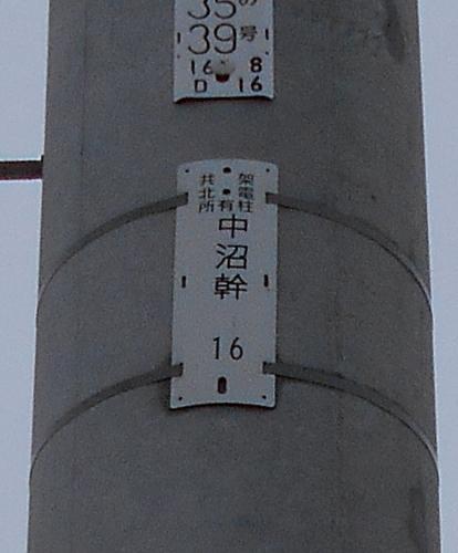 中央バス「丘珠線」 停留所「中沼小学校」近くの電柱「中沼幹」拡大