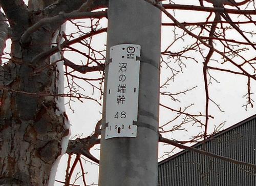 中沼会館近くの電柱「沼の端」幹