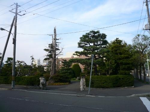 白石区平和通 横山製粉工場のお隣