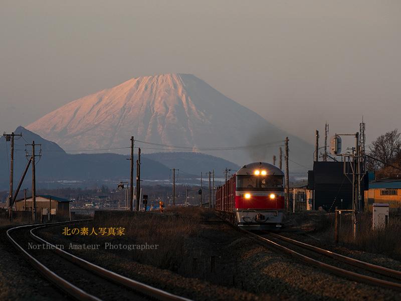 貨物列車が走る風景