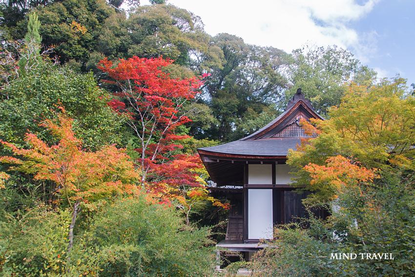円成寺 鎮守 拝殿2