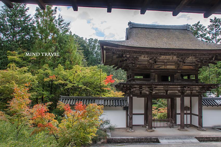 円成寺 楼門2
