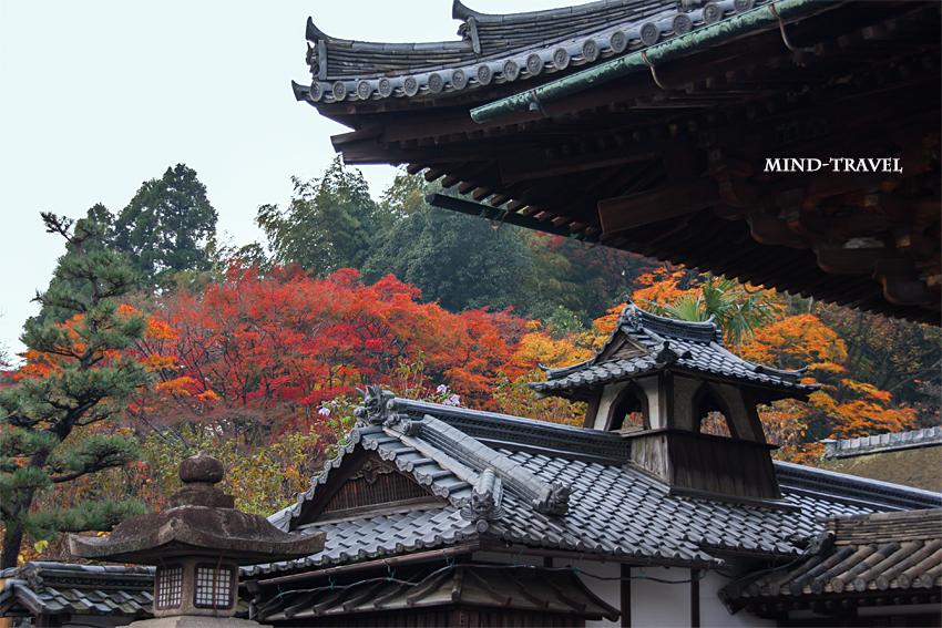 石山寺 東大門