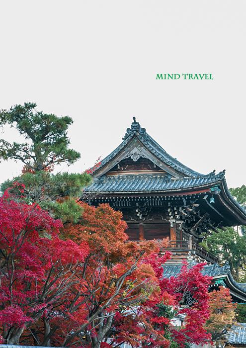 清涼寺 門2