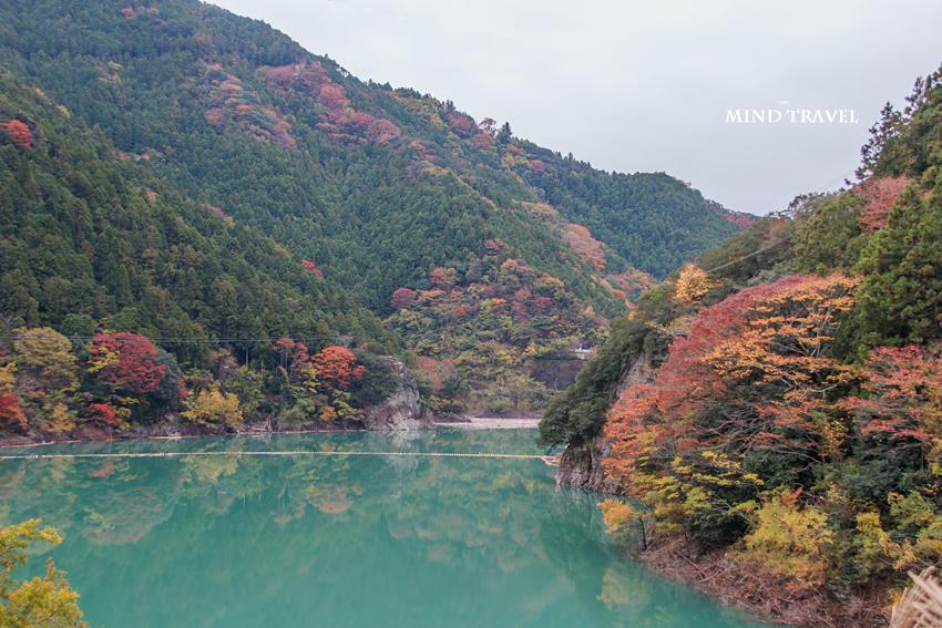岩倉神社付近-ダム