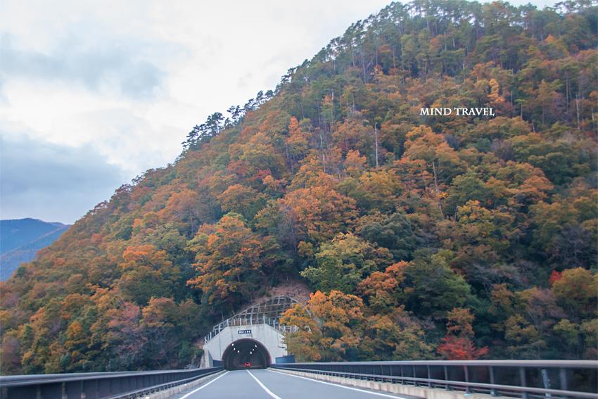 土津川 トンネル