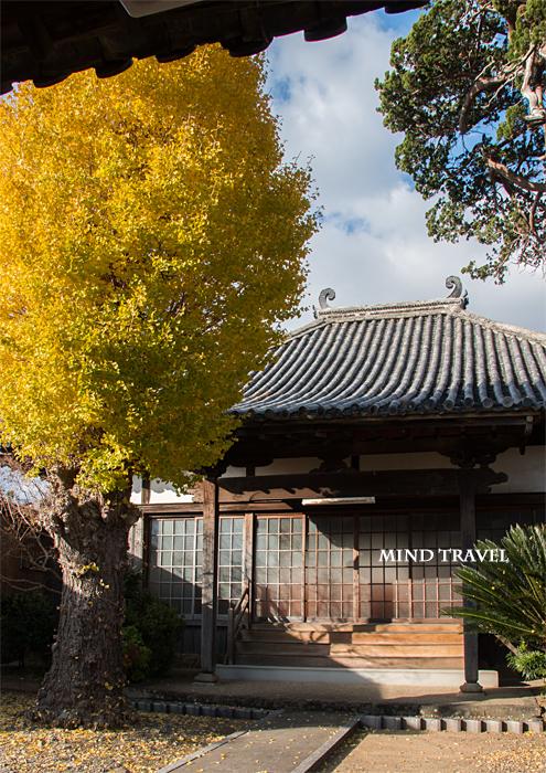 湯浅 仙光寺