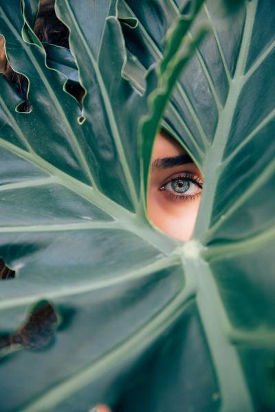 eye_202001062014160f8.jpg