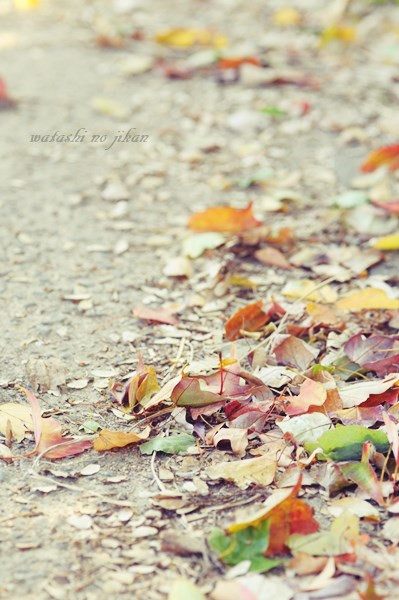 photo20191113.jpg