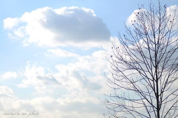 sky20191112.jpg