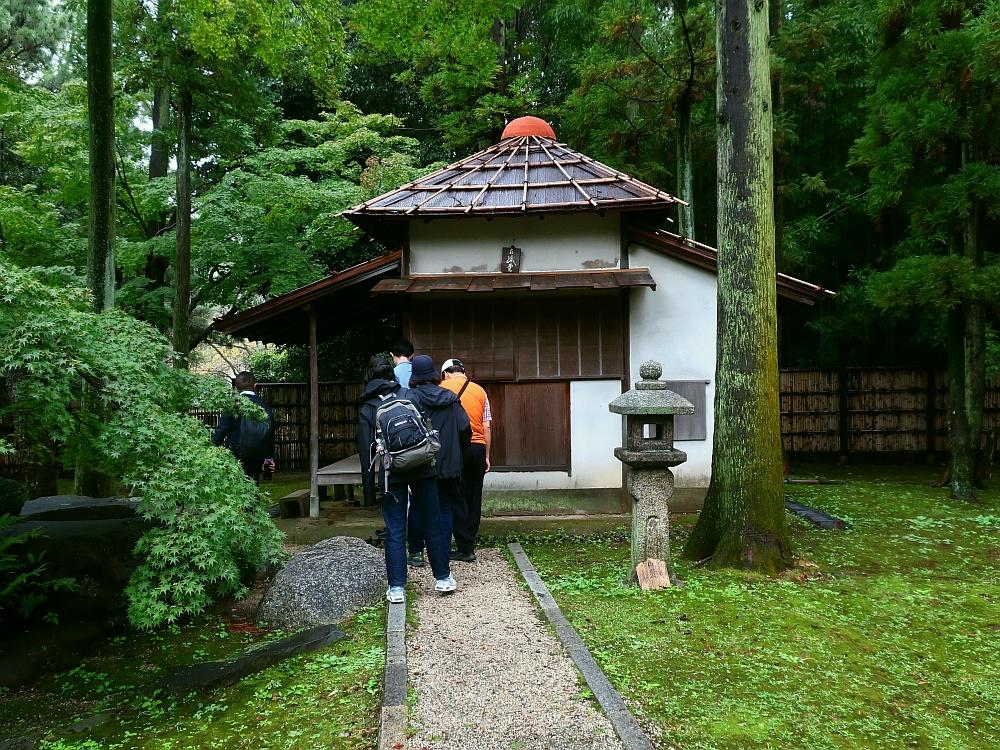 2019_10_19 名古屋城:名古屋まつり無料開放15-茶席特別公開05