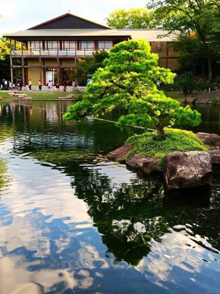 2019_10_22 名古屋市東区:徳川園(即位礼正殿の儀-入園無料)17