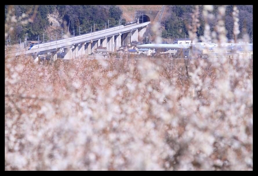 新幹線200301