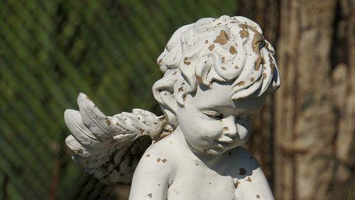 angel-4149389_960_720.jpg