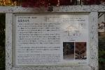 紅葉旅_037