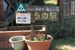 英彦山2019_014