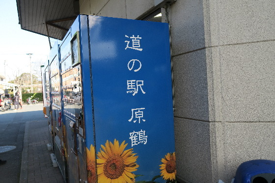 英彦山2019_051