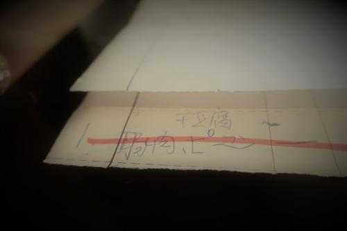張さん厨房 (13)_R