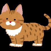 cat_munchkin.png