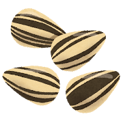 nuts_himawari.png