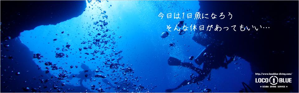 locoblue-diving