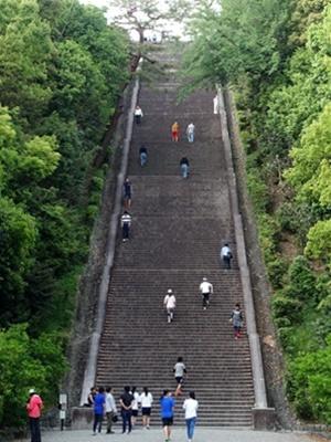 桃山御陵大階段2005