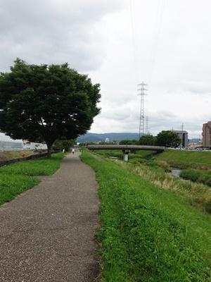 山科川上る2006