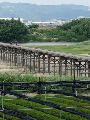 流れ橋2006