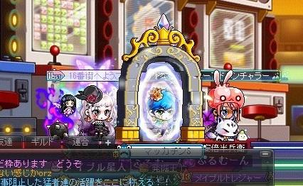 Maple_19010a.jpg