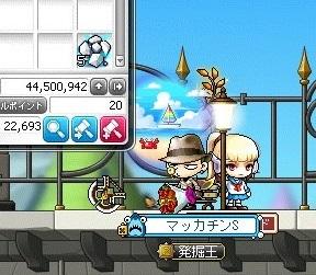 Maple_19020a.jpg