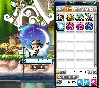 Maple_19061a.jpg