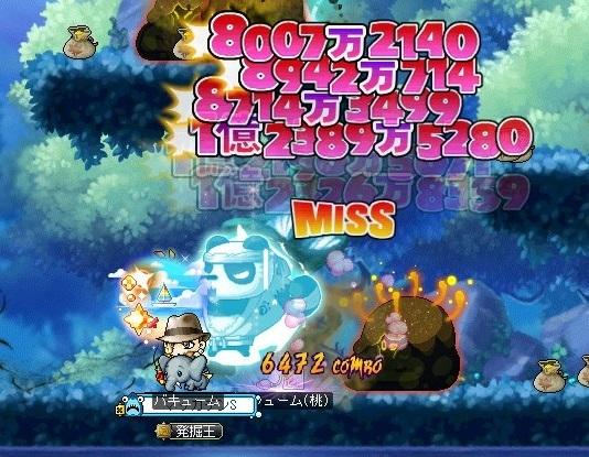 Maple_19113a.jpg