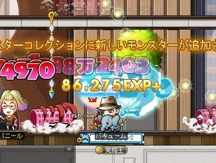 Maple_19229a.jpg